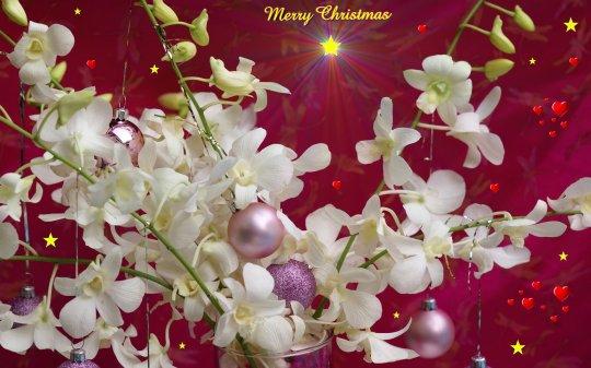 widescreen-merry-christmas-wallpaper